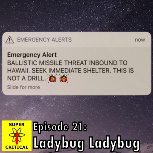 Episode 21: Ladybug Ladybug