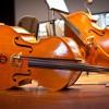 Canon In D Pachelbel  - Arpa, Violino e Contrabbasso