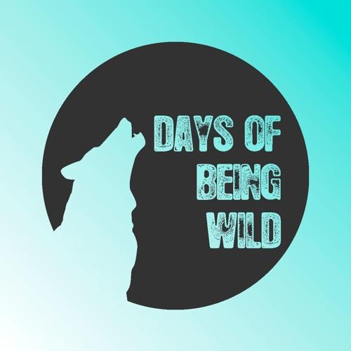 PRÉMIÈRE: Offset - Night Drive (Club Bizarre Remix) [Days Of Being Wild]