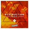 Debris - Destruction Radio 056 2018-01-20 Artwork
