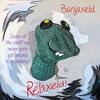 Banjaxeld - Maggie's Farm (Bob Dylan cover)