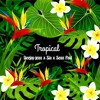 Deejay Jean X Sia X Sean Paul Cheap Thrills Tropicalexlu 2o18click Buy For Free Download Mp3