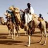 """Culture : """" Le Festicham n'est pas organisé sous l'angle politique"""" (Amadou Diemdoda Dicko)"""