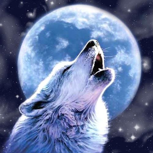 ~ Cries At The Moon~