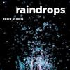 Raindrops Mp3