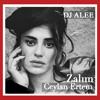 DJ ALEE & CEYLAN ERTEM - ZALIM