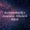 Opdracht 3 Audio Annemiek Abbekerk MR1B