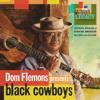Dom Flemons - He's a Lone Ranger