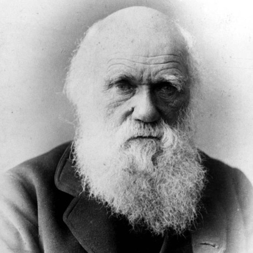 Charles Darwin on God (from The Portable Atheist)