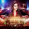 Dr. Kavarga Podcast, Episode 783: WWE Elimination Chamber 2014 Review