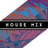 House Mix - 20 minute mix