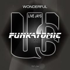 Live Jays  - Wonderful(Funkatomic Remix)