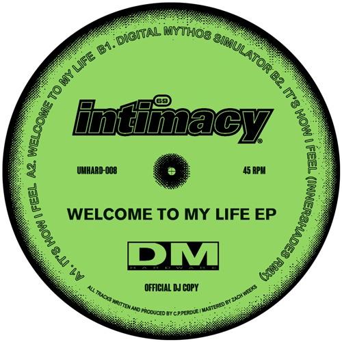 PREMIERE: Intimacy - It's How I Feel (Innershades Remix) [DM Hardware]