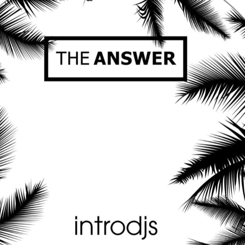 THE ANSWER -  Mix By InTroDjs 19