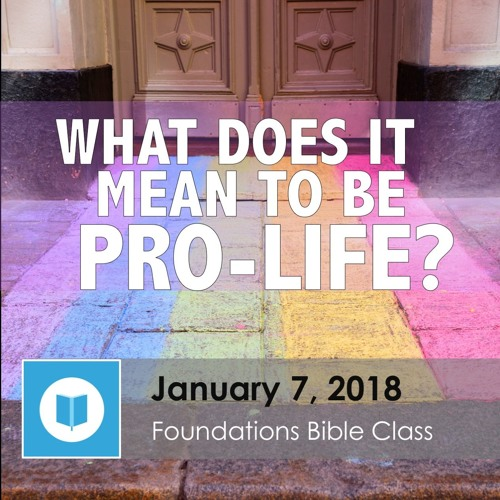 What Does It Mean to Be Pro-Life, part 2