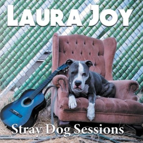 04 Laura Joy - Stray Dog Sessions - Midwest Midwinter