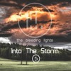 Into the Storm - Pre-final Mix (NEW SONG)