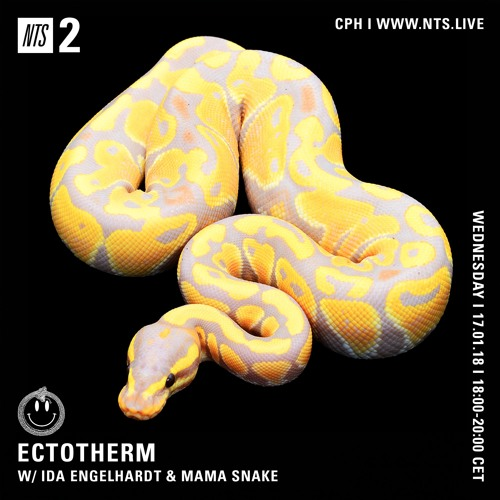 NTS Radio x Ectotherm 17.01.18 - Mama Snake