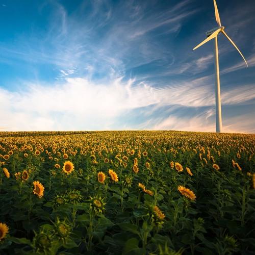 Grüne Energiewende in Osteuropa | Böll.Fokus