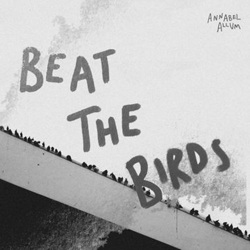 Beat the Birds