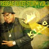 Download REGGAE QUIET STORM MIX VOL.1 (LIVE PARTY MIX) Mp3