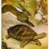 A Symphony of Fables III. The Tortoise and the Hare.