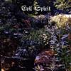 EVIL SPIRIT - The Word Of Flesh