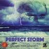 Download PERFECT STORM RIDDIM (ZION I KINGS RIDDIM SERIES VOL 7) Mp3
