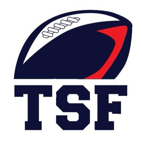 2017 TSF Year in Review Preview