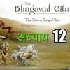 Chapter 12 - Shrimat Bhagavad Geeta  - Bhakti Yog - HINDI