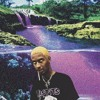 Download COMETHAZINE -