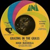 Hugh Masekela - Grazing In The Grass (#TRUMPETCOVER)