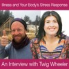 Illness and Your Body's Stress Response – An Interview with Twig Wheeler
