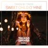Taken By Trees - Sweet Child O' Mine (Thiago Zancaner Remix) Free Download