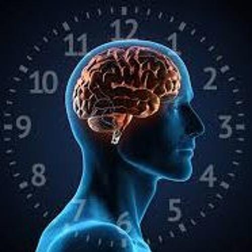Hypertension and Circadian Rhythm