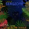 13 - Likkle Sergiote -Im Still Smoking - LIVIN' IN THE JUNGLE, Rey Jahb 2017-18.