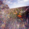 Unselfish. by Drippy G & 6Cash (ReProd. JDove)