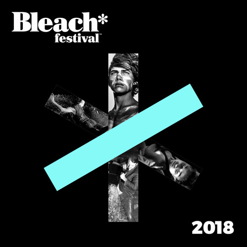 Interview with Brian Ritchie — Bleach* Festival 2018
