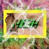 High (Prod. C - RiNGe)