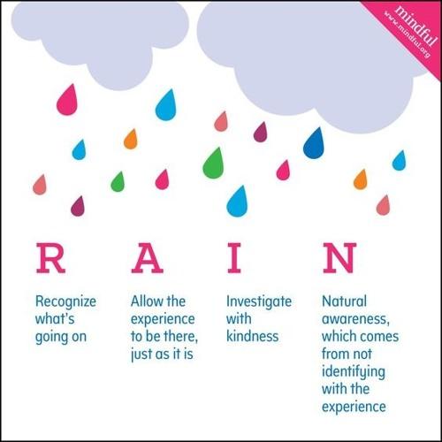 RAIN Meditation (MFW Guided Meditation #2)