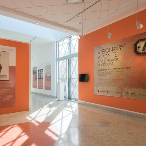 Edouard Duval Carrié Interview by Onajide Shabaka -Visionary Aponte: Black Art and Freedom