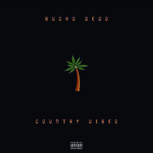 Country Vibes the EP