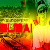 MELO DE DUBAI HUNGRIA REGGAE REMIX  MASTER PRODUÇÕES FREE DOWNLOAD