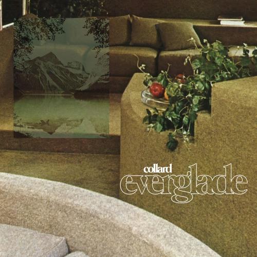 Collard - Everglade