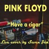 Have A Cigar (Pink Floyd) - Live looper cover by Seven Zen
