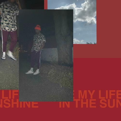 Picnic - Sunshine - [Roy Ayers Flip]