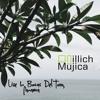 Illich Mujica Live at Palmar Beach Lodge - Bocas del Toro, Panama