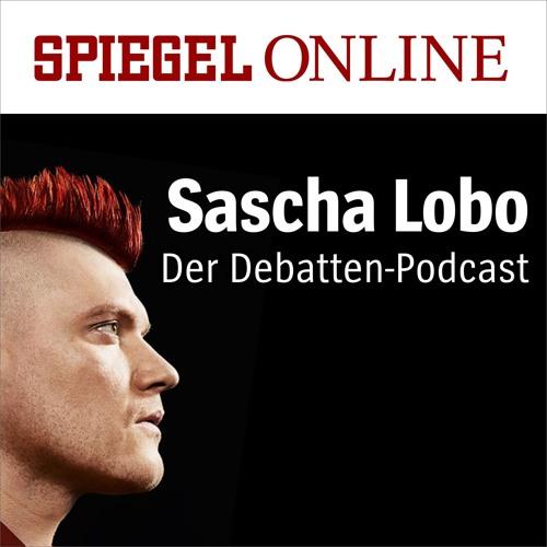 Replik auf Volker Kauder: Hätte, hätte, Kupferkabel