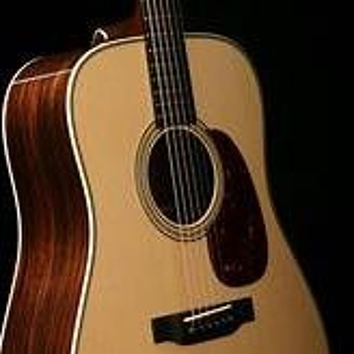 Steel Guitar FORTE
