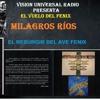 Download 166  EL VUELO DEL FENIX ,EL RESURGIR DEL AVE FENIX DIA 2 DE FEBRERO 2018  MILAGROS RÍOS Mp3